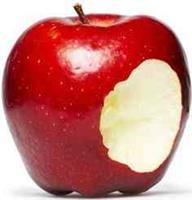 Adam & Eve Home & Garden Creations