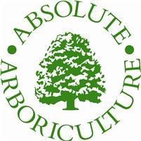 Absolute Arboriculture - Max Ferretti