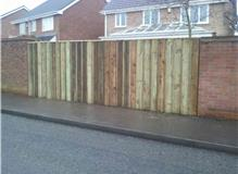 New fencing.