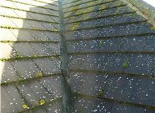 Aldridge & Sons Roofing Ltd