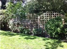 Trellis panel fencing