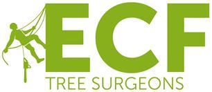ECF Tree Surgeons