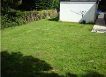 Renovation of substantial area of back garden.