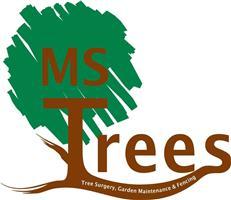 M S Trees