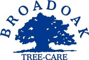 Broadoak Tree Care