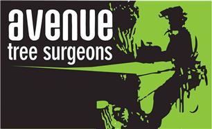 Avenue Tree Surgeons