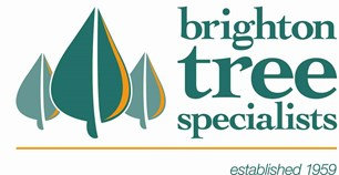 Brighton Tree Specialists