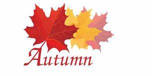 Autumn Repairs