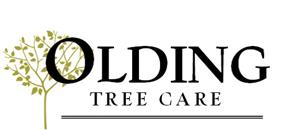 Olding Tree care