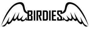 Birdies - UPVC Repairs, Replacements and Carpentry Service