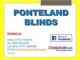 Ponteland Blinds