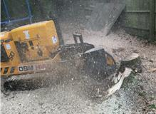 tree stump and roots grinding