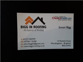 Bigg In Roofing