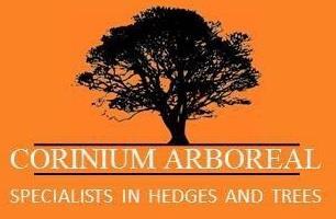 Corinium Arboreal