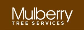 Mulberry Tree Services