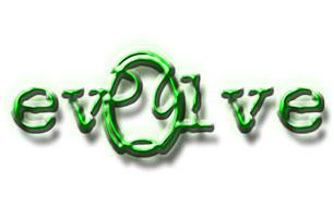 Evolve S & B Ltd