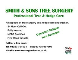 S Smith & Sons Tree Surgery
