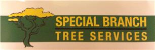 Special Branch Tree Services
