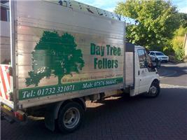 Day Tree Fellers