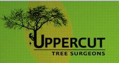 Uppercut Tree Services