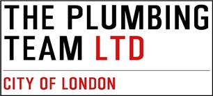 The Plumbing Team Ltd