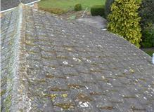 Clean moss off roof by hand and also spray the roof with moss killer.
