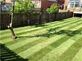 Oakdale Landscape & Garden Services
