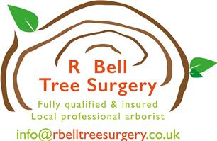 R Bell Tree Surgery