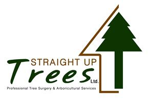 Straight Up Trees Ltd