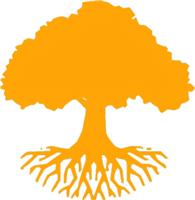 Southern Arborists Ltd