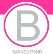 Barnes Pond Property Maintenance