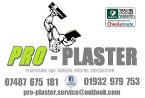 Pro-Plaster