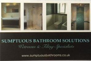 Sumptuous Bathroom Solutions