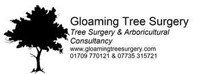Gloaming Tree Surgery