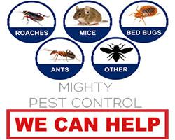 Mighty Pest Control Limited