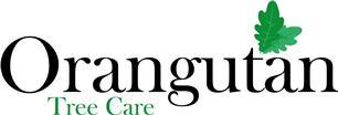 Orangutan Tree Care