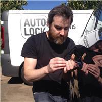 Auto Lock Solutions