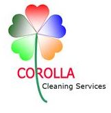 Corolla Window  Cleaning  Services