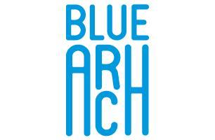 Blue Arch Ltd