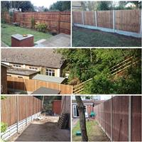 Lewis's Fencing