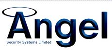 Angel Security Systems Ltd